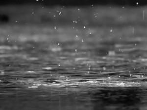 acqua di prima pioggia